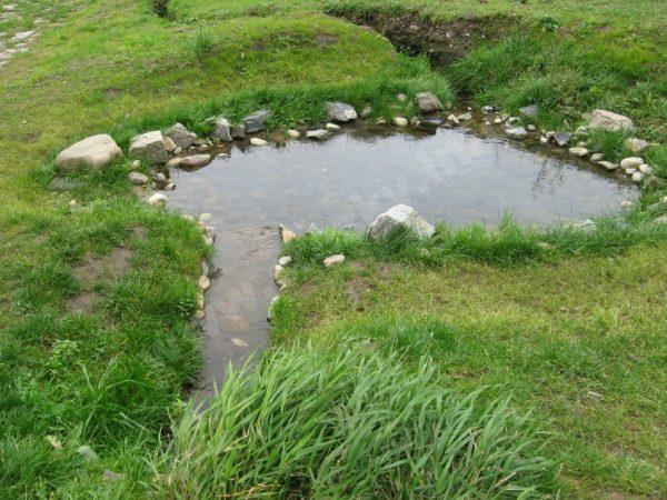 jezírko na trase naučné stezky Počítáme s vodou