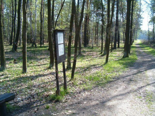 informační panel naučné stezky Klánovickým lesem